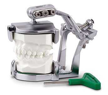 Articulator used for immediate dentures